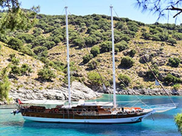 Deniz Felix Balina Gulet