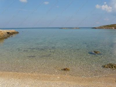 Arki Island
